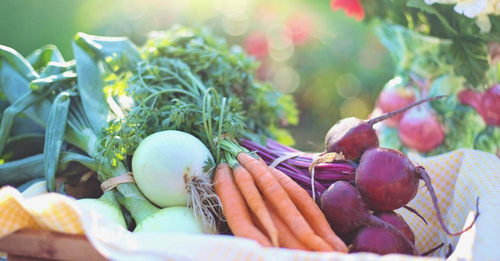İklim dosyası #4 – Tarım, hayvancılık ve gıda: Yediklerimiz dünyayı ısıtıyor