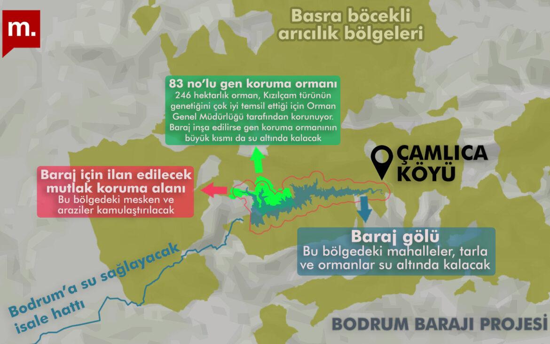Bodrum'un su ihtiyacı için kurulacak baraj, Muğla'daki Çamlıca Köyü mahallelerini ve arıcılık merkezi kızılçam ormanını sular altında bırakacak